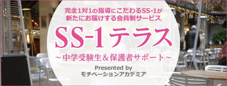 SS-1テラス